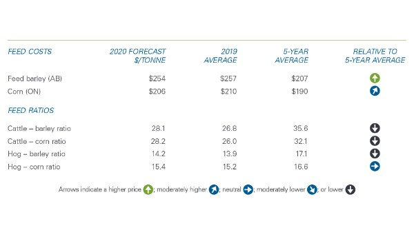 Table 2. Profitability trending up in 2020 on higher revenue projections and similar feed costs