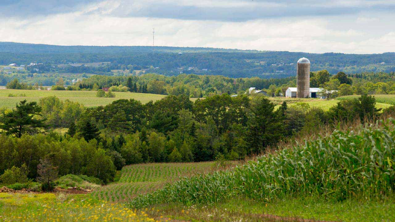 Valeur Des Terres Agricoles Au Canada En 2016 Trois Choses A